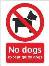 """No Dogs"" WARNING STICKER DECAL SIGN A5 (145mm x 195mm) SHOP OFFICE"